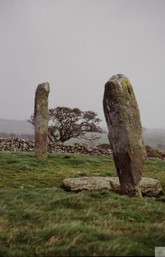 Dumtroddan Standing Stones, Dumfries & Galloway  #Scotland #History #Castles