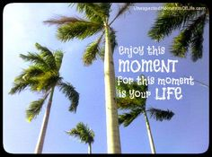 Words of Wisdom #90: Enjoy this moment | Unexpected Moments of Life