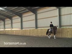 How to warm your horse properly for training and test riding with Andrew Gould and Daniel Timson