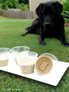 Frozen Peanut Butter Banana Dog Treats.  Put frozen banana Scillies Ina food processor and mix till creamy.  Add peanut butter and blend again. Separate into cups, add treat, and freeze.  Let her lick it from the frozen container so it'll last longer.