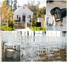 Wedding at Brennaisance – Stellenbosch