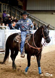 (101) Facebook Country Life, Country Music, Team Roper, Bucking Bulls, Rodeo Cowboys, Blue Heelers, Kansas City Chiefs Football, Barrel Racing Horses, Western Riding