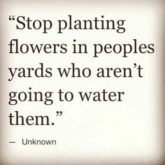 Stop planting flowers in people's yards who aren't going to water them