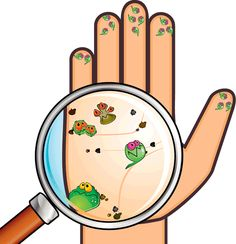 Image with transparent background, Hand Virus Bacteria Germs Cartoon Magnifying Photo without background its from Cartoons and Signs category, PNG file easily with one click Free HD PNG images, png design with high quality. Preschool Education, Preschool Crafts, Science Activities, Activities For Kids, Hygiene Lessons, Classroom Jobs, Baby Clip Art, Toilet Training, Personal Hygiene
