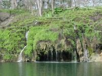Crockett Gardens is a natural spring that feeds into Lake Georgetown.