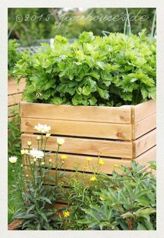 Die 49 Besten Bilder Von Raised Bed Hochbeet Raised Beds Raised