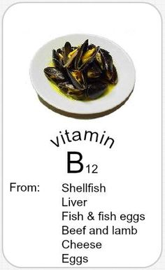 Which B Vitamin Is Only Found Naturally In Animal Foods