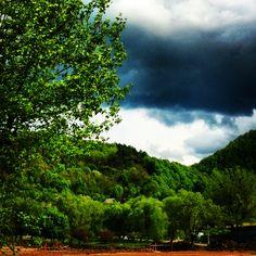 Nature  green  Baia Mare ❤️ Romania