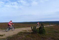 Saariselkä MTB 2013, XCM (18) | Saariselkä.  Mountain Biking Event in Saariselkä, Lapland Finland. www.saariselkamtb.fi #mtb #saariselkamtb #mountainbiking #maastopyoraily #maastopyöräily #saariselkä #saariselka #saariselankeskusvaraamo #saariselkabooking #astueramaahan #stepintothewilderness #lapland