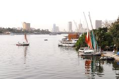 Cairo Nile River - Cairo - Wikipedia, the free encyclopedia