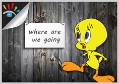 Tweety - where are we going