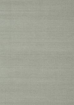 SHANG EXTRA FINE SISAL, Flannel, T41169, Collection Grasscloth Resource 3 from Thibaut