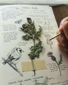 Imagem de art, diary, and painting