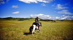 Do the Mongol Derby! 1000km horse race through the Mongolian Steppe