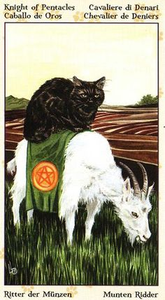 This Knight of Pentacles from the Tarot of Pagan Cats captures the essence of the card rather well. menageatarot.com