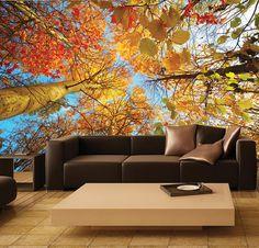 Wall MURAL, Photo Wall Decal, Self-Adhesive Vinyl Wallpaper ORANGE TREETOP