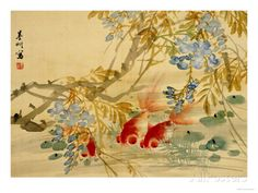 Goldfish Print by Ni Tian - at AllPosters.com.au