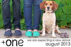 Cute pregnancy announcement - something cute to include the dog(s)