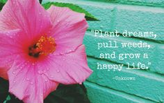 """""""Plant dreams, pull weeds, and grow a happy life."""" - Unknown"""