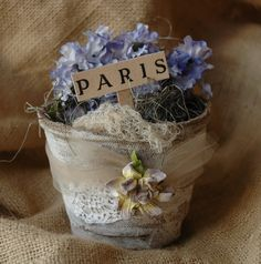 Parisian peat pot
