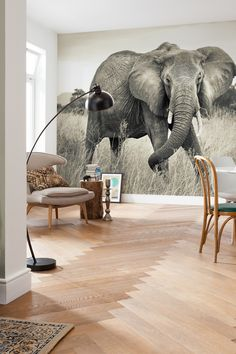Elephant Mural by Brewster Home Fashions on @HauteLook