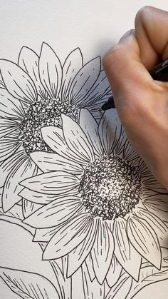 Botanical Line Drawing, Botanical Wall Art, Botanical Drawings, Sunflower Drawing, Sunflower Art, Drawing Sketches, Art Drawings, Sketching, Diy Painting