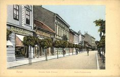 Arad, Romania Romania, Old Photos, Nostalgia, History, Street, Places, Passion, Books, Old Pictures