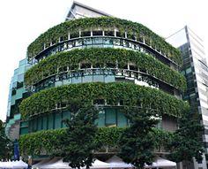 Vertical garden singapore at building diy Verticle Garden, Vertical Garden Design, Green Architecture, Landscape Architecture, Building Construction Materials, Living Roofs, Living Walls, Green Facade, Vertical Farming