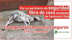 Petition · Department of Agriculture, Livestock, Fisheries and Food: security perimeters book of caza alrededor del Santuario Gaia · Change.org