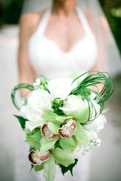 Green Orchids| Photo:  http://oeilphotography.com/