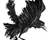 Bri Hermanson Illustration by brihermanson Quoth The Raven, Raven Bird, Body Art Tattoos, Cool Tattoos, Cute Tats, Gothic Tattoo, Victorian Goth, Creatures Of The Night, Black White Art