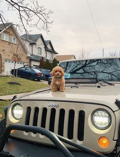 Fantastic Dream cars images are readily available on our site. My Dream Car, Dream Cars, Mercedez Benz, Cute Car Accessories, Cute Dogs And Puppies, Doggies, Jeep Cars, Jeep Jeep, Jeep Truck