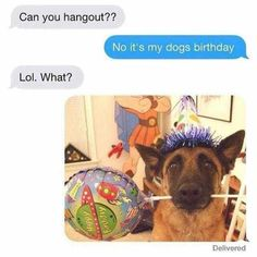 Funny Text About A Dog vs. Birthday - Funny Text - - Text About A Dog vs. Birthday plus the life size Hercules standee in the back lol The post Funny Text About A Dog vs. Birthday appeared first on Gag Dad. Animal Jokes, Funny Animal Memes, Funny Animal Pictures, Cute Funny Animals, Cute Baby Animals, Funny Cute, Funny Dogs, Funny Photos, Weird Dogs