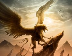 Photo of Griffin for fans of Fantasy 30961769 Magical Creatures, Fantasy Creatures, Fantasy World, Fantasy Art, Dream Fantasy, Griffin Mythical, Dragons, Beast, Legendary Creature