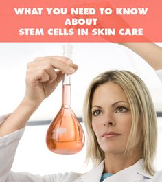 What You Need To Know About Stem Cells In Skin Care