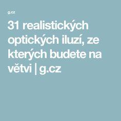 31 realistických optických iluzí, ze kterých budete na větvi   g.cz