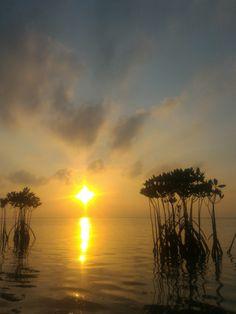 Pantara Sunrise 5