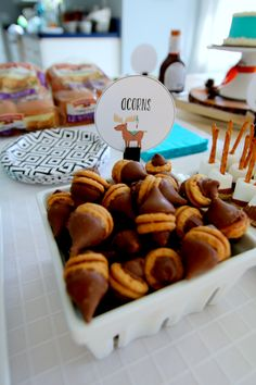 Wild ONE [Woodland] Birthday — Moments with Miss Chocolate Dipped Marshmallows, Marshmallow Dip, Graham Cracker Crumbs, Graham Crackers, Cupcake Smash Cakes, Dont Feed The Bears, Orange Color Schemes, Boys 1st Birthday Party Ideas, Slider Buns