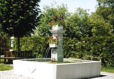 Neukirch-Egnach Switzerland, Fountain, Outdoor Decor, Plants, Home Decor, Lanterns, Communities Unit, Water Fountains, Flora