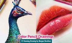 25 Stunning and Realistic Color Pencil Drawings by Morgan Davidson. Read full article: http://webneel.com/25-beautiful-color-pencil-drawings-valentina-zou-and-drawing-tips-beginners | more http://webneel.com/drawings | Follow us www.pinterest.com/webneel