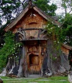 Tree house carved from a giant tree trunk.
