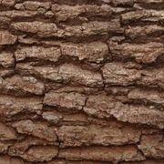 How to Make Fake Tree Bark | eHow