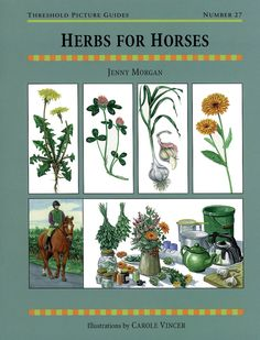 Threshold Picture Guide No. 27 Herbs for Horses by Jenny Morgan | Quiller Publishing. A straightforward guide to the use and preparation of safe and effective herbal remedies for horses and ponies. #horse #pony #herbal #remedies #herbs #oils #tips