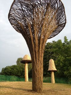 Kew Mushrooms by Tom Hare. Here are the seven clusters of Uk Edible Fungi for the autumn festival at The Royal Botanic Gardens ,Kew.