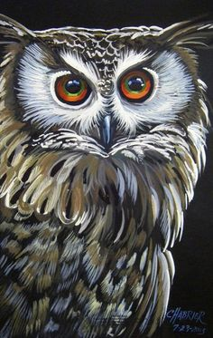 X Watercolor Painting of an Owl with Bright Eyes Bright Eyes Owl Bird, Bird Art, Pet Birds, Owl Artwork, Owl Illustration, Owl Eyes, Owl Pictures, Bird Drawings, Cute Owl