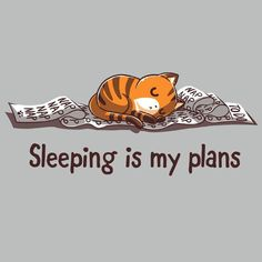 Sleeping Is My Plans T-Shirt TeeTurtle