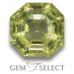 GemSelect features this natural untreated Apatite from Madagascar. This Green Apatite weighs 3.4ct and measures 8.4 x 8.3mm in size. More Asscher Cut Apatite is available on gemselect.com #birthstones #healing #jewelrystone #loosegemstones #buygems #gemstonelover #naturalgemstone #coloredgemstones #gemstones #gem #gems #gemselect #sale #shopping #gemshopping #naturalapatite #apatite #greenapatite #octagongem #octagongems #greengem #green