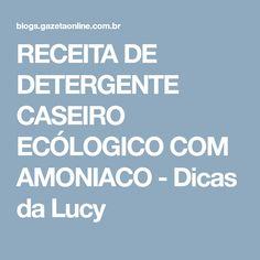 RECEITA DE DETERGENTE CASEIRO ECÓLOGICO COM AMONIACO - Dicas da Lucy