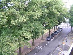 Bientôt+un+an,+pas+tout+à+fait+:+...+que+ma+vie+par+ici+a+changé.+Et+en+même+temps+pas+tant+puisque+j'y+suis+seule.  [Bruxelles,+vendredi+17+juillet+2009,+de+la+fenêtre+de+l'hôtel]+ +gilda_f