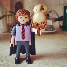 Harry Potter & Hedwig